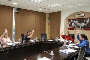 Dictaminan comisiones sobre educación, turismo, protección a animales y equilibrio ecológico